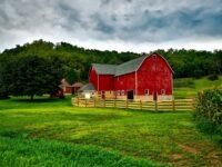 Steeds meer mensen kiezen voor een woning in het platteland